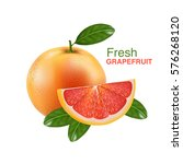 fresh grapefruit vector  | Shutterstock .eps vector #576268120