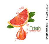 fresh grapefruit vector  | Shutterstock .eps vector #576268210