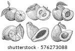 Set Of Illustrations Of Fruits...