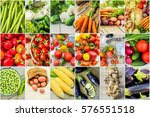 collage of different vegetables.... | Shutterstock . vector #576551518
