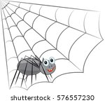 Funny Smiling Spider Sits On A...