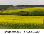 yellow meadow | Shutterstock . vector #576568630