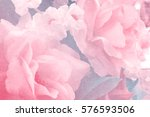 Stock photo sweet color fabric roses in soft style for background 576593506