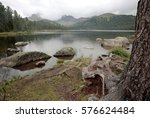 The Lake Svetloe In The Natura...