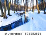 winter scene  creek in the... | Shutterstock . vector #576653596