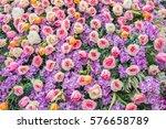 roses | Shutterstock . vector #576658789
