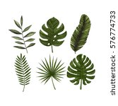 tropical leaves collection.... | Shutterstock .eps vector #576774733