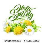 inscription hello spring hand... | Shutterstock .eps vector #576882859
