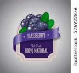 berry label with ripe blueberry ... | Shutterstock .eps vector #576922876