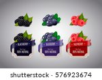 realistic berry labels set with ...