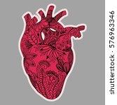 hand drawn human heart in... | Shutterstock .eps vector #576963346