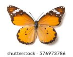 Stock photo butterfly isolated on white 576973786