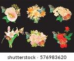 set of flowers and butterflies... | Shutterstock .eps vector #576983620