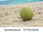 Green Fresh Coconut On Sand....
