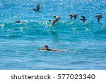 surfer girl waiting for the... | Shutterstock . vector #577023340