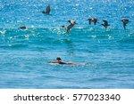 surfer girl waiting for the... | Shutterstock . vector #577023340