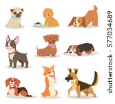 cute funny cartoon dogs vector... | Shutterstock .eps vector #577034689