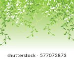 abstract background with green... | Shutterstock .eps vector #577072873