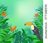 jungle background with  leaves  ... | Shutterstock .eps vector #577188550
