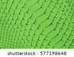 green snake scales macro...   Shutterstock . vector #577198648