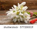 bouquet of spring flowers... | Shutterstock . vector #577200319