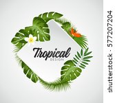 tropical vector illustration... | Shutterstock .eps vector #577207204