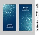 set of vertical banners.... | Shutterstock .eps vector #577216828