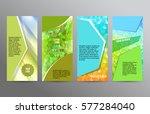 design elements presentation...   Shutterstock .eps vector #577284040