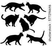 Stock vector cats collection vector silhouette 577296646