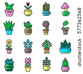 plants and flowers in pots... | Shutterstock .eps vector #577362568