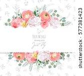 peony  rose  ranunculus  pink...   Shutterstock .eps vector #577381423