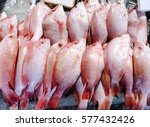 close up of fresh red snapper... | Shutterstock . vector #577432426