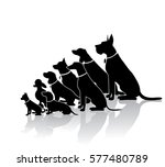 group of sitting dogs in... | Shutterstock .eps vector #577480789