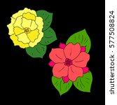 set of flowers. | Shutterstock .eps vector #577508824