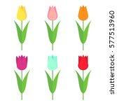 tulips set icon. flowers... | Shutterstock .eps vector #577513960