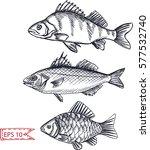 vector illustration sketch  ... | Shutterstock .eps vector #577532740