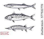 vector illustration sketch  ... | Shutterstock .eps vector #577532770