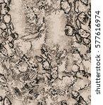 snake pattern   Shutterstock .eps vector #577616974