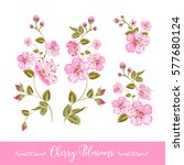 set of sakura flowers elements. ... | Shutterstock .eps vector #577680124