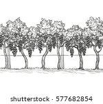 hand drawn vector illustration... | Shutterstock .eps vector #577682854