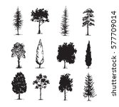 trees sketch set  hand drawing...   Shutterstock .eps vector #577709014