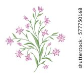 floral bouquet set. wild ... | Shutterstock .eps vector #577750168