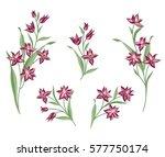 floral bouquet set. wild ... | Shutterstock .eps vector #577750174