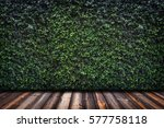 Backdrop Of Green Leaves Wall...