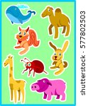 funny animals pack. complete...   Shutterstock .eps vector #577802503