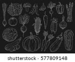 vegetables chalk sketches of... | Shutterstock .eps vector #577809148