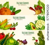 vegetable banners with... | Shutterstock .eps vector #577809220