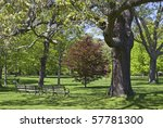 A beautiful park like setting in the Spring at The Bayard Cutting Arboretum on Long Island. - stock photo