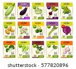 vegetables price cards. vector  ... | Shutterstock .eps vector #577820896