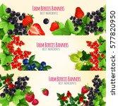 berries vector banners with... | Shutterstock .eps vector #577820950